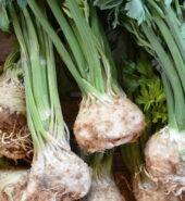 Celer (kg)